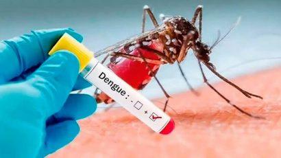 Dengue y uso de domisanitarios