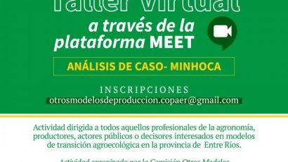Taller Virtual: Análisis del caso Minhoca