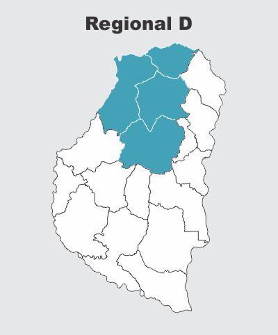 Regional D COPAER
