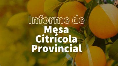 La Mesa Citrícola provincial se reunió