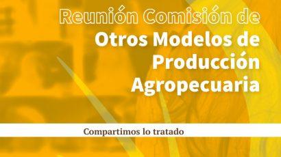 Comisión otros modelos de producción