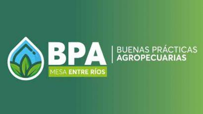 Reunión plenaria de la Mesa de BPA