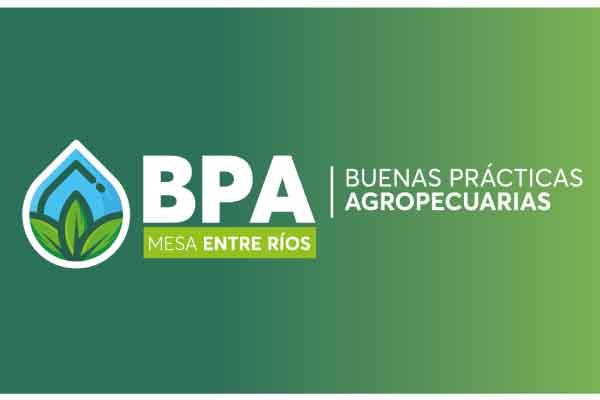 Plenario Mesa BPA