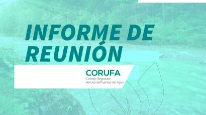 CoRUFA: Acta Reunión Plenaria N° 146