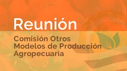 Informe Comisión Otros Modelos de Producción Agropecuaria- CoPAER